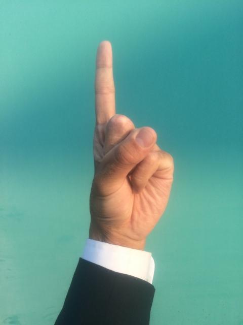 1を表現する手の指