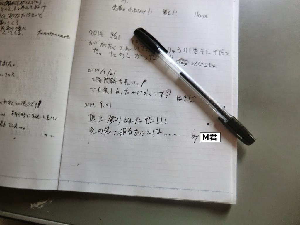 f:id:uhouhomaru:20190212204305j:plain