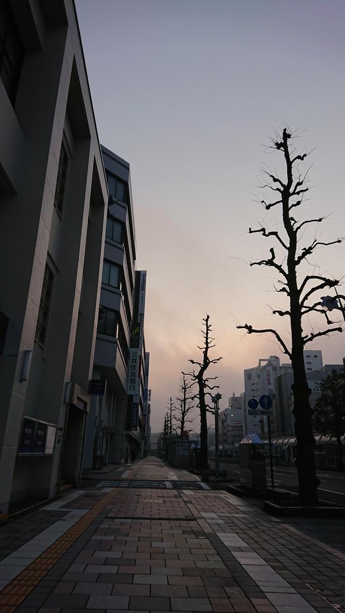 f:id:uhouhomaru:20190313225304j:plain