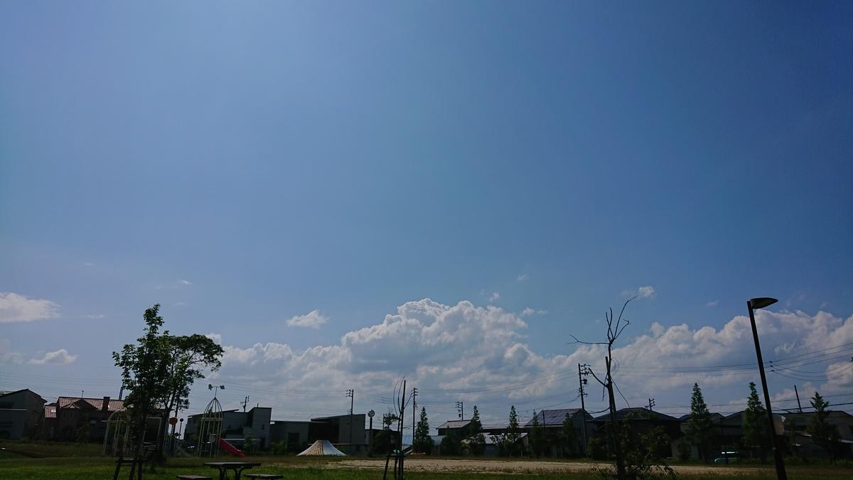 f:id:uhouhomaru:20190624154116j:plain