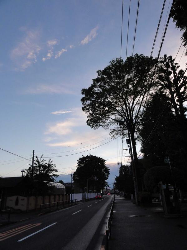 f:id:ujikenorio:20120504181659j:image