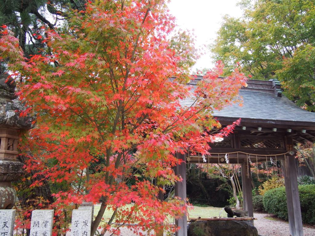 f:id:ujikintoki_byoubu:20151126144714j:plain