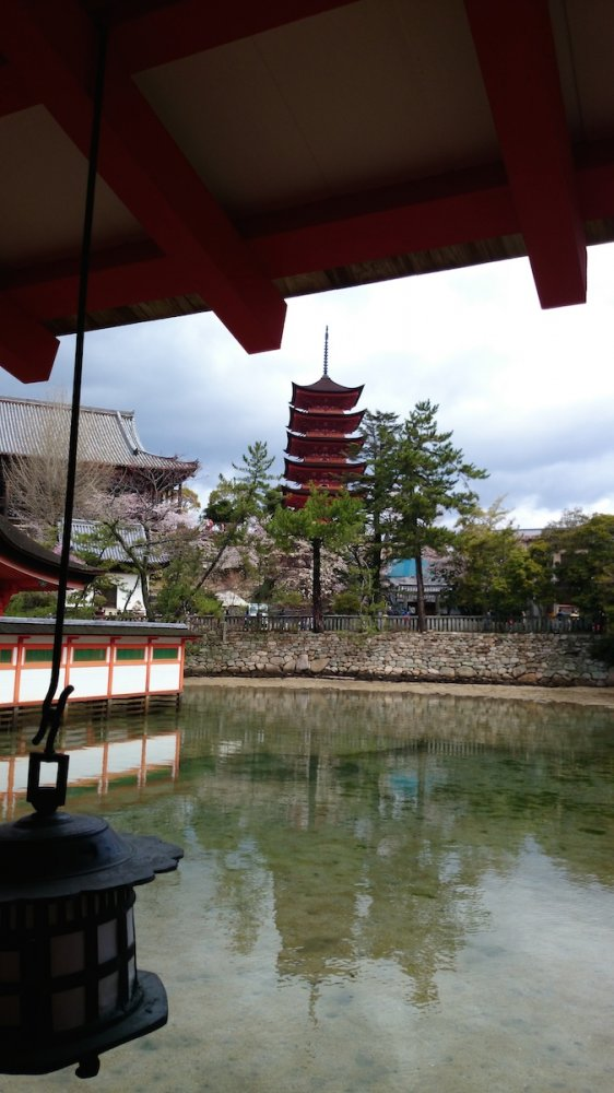 f:id:ujikintoki_byoubu:20160830105906j:plain