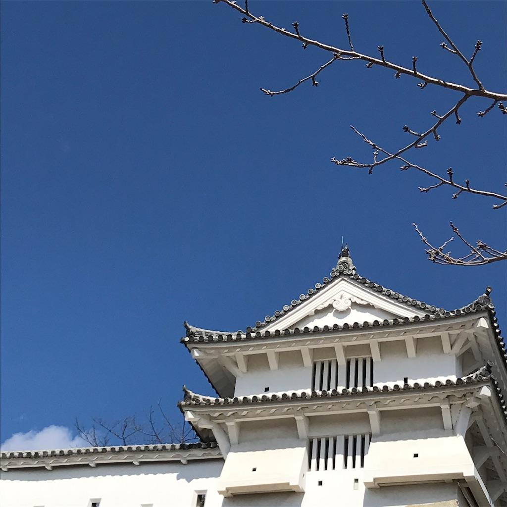 f:id:ukiko_tenui:20210216142608j:image