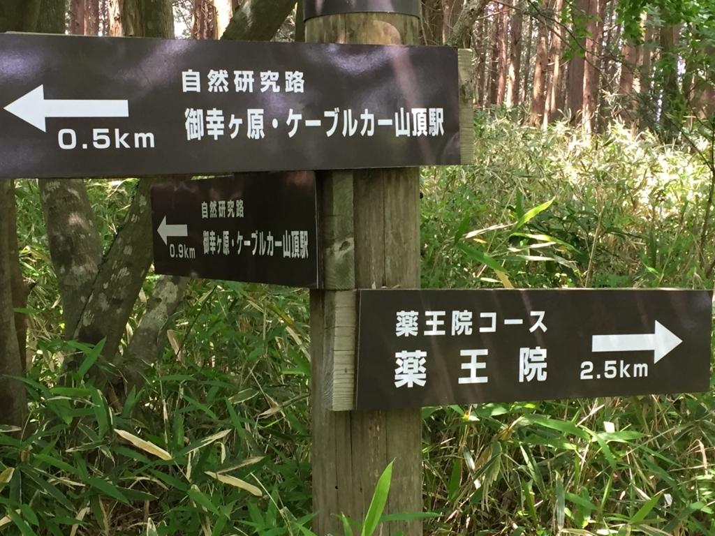 f:id:ukkarisangakubu2:20180602212527j:plain