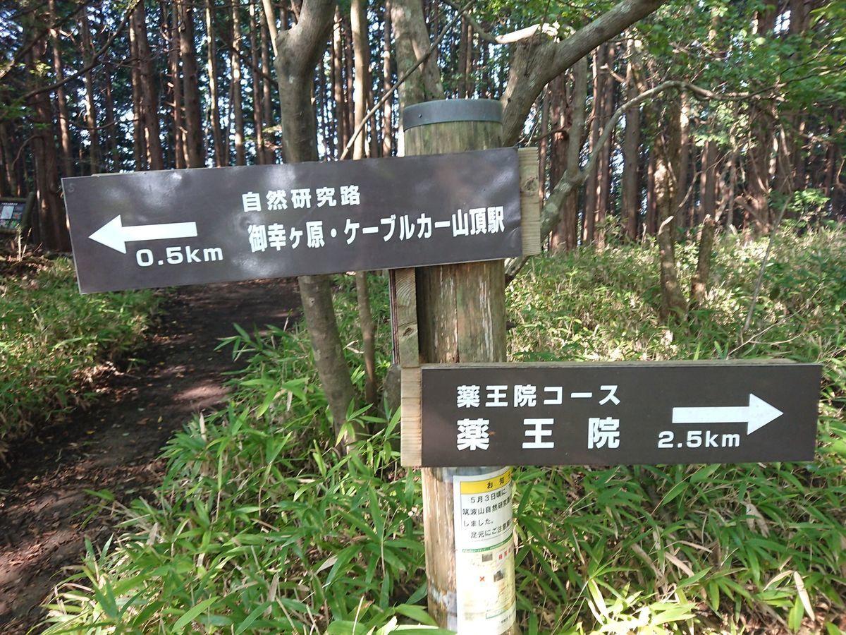 f:id:ukkarisangakubu2:20200816152926j:plain