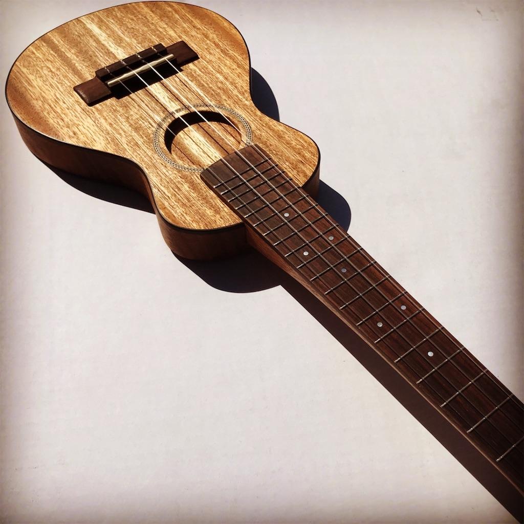 f:id:ukulelefun:20200619165625j:image