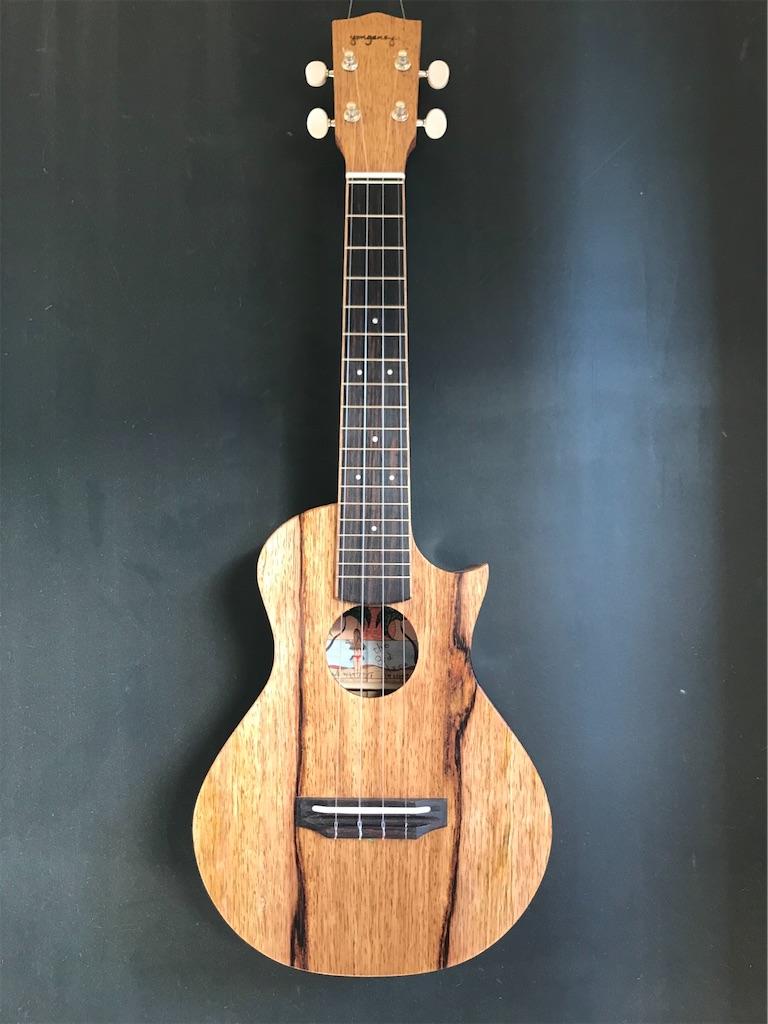 f:id:ukulelefun:20210208164445j:image