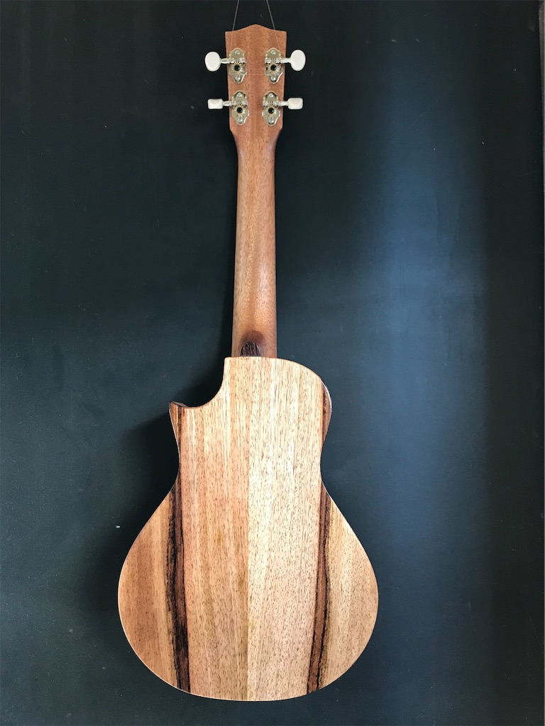 f:id:ukulelefun:20210208164500j:image