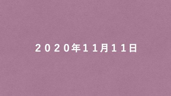 f:id:ultora3923:20201111235650j:plain