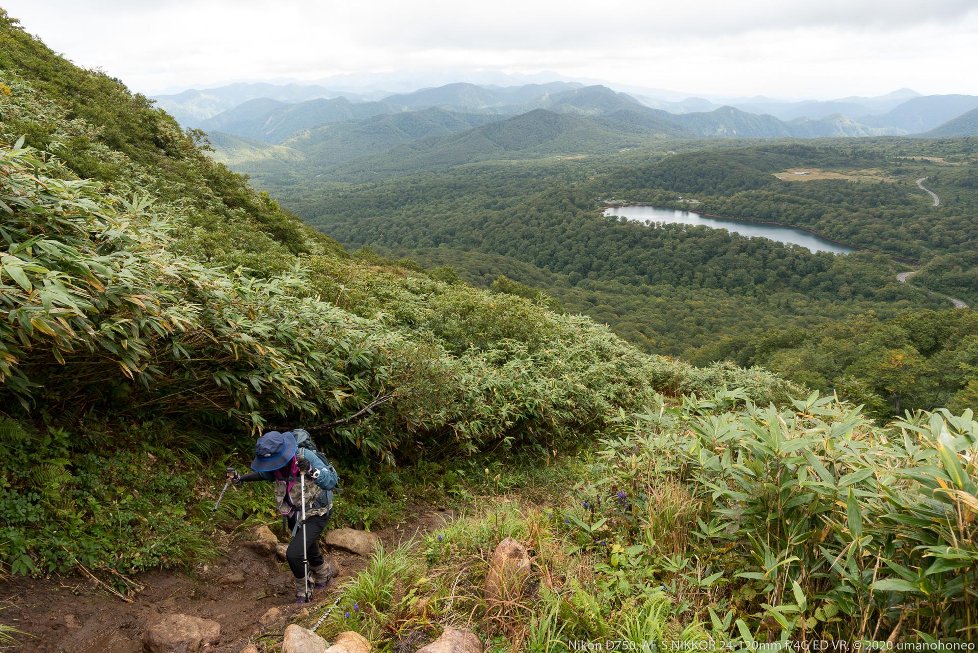秣岳登山道から望む須川湖