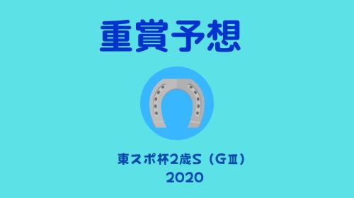 f:id:umassy:20201122222155p:plain