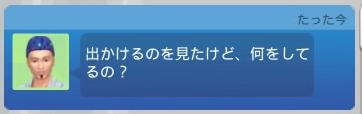 f:id:umazura-sim:20201220151919j:plain