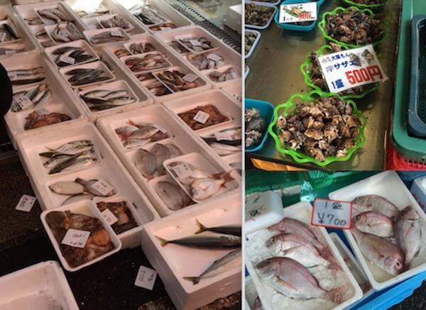 日曜朝市/たくさんの魚