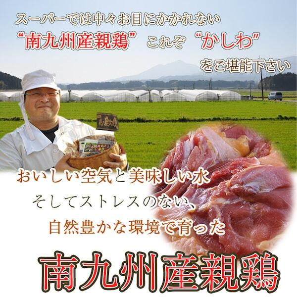 南九州産親鶏をお取り寄せ