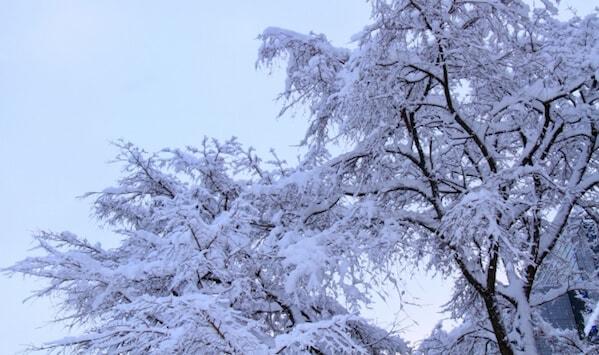 冬の札幌・新千歳空港