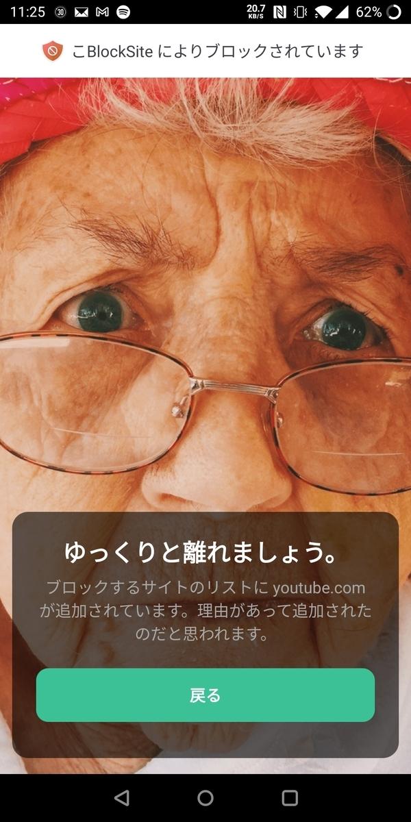f:id:ume-boshi:20210512232746j:plain:h400