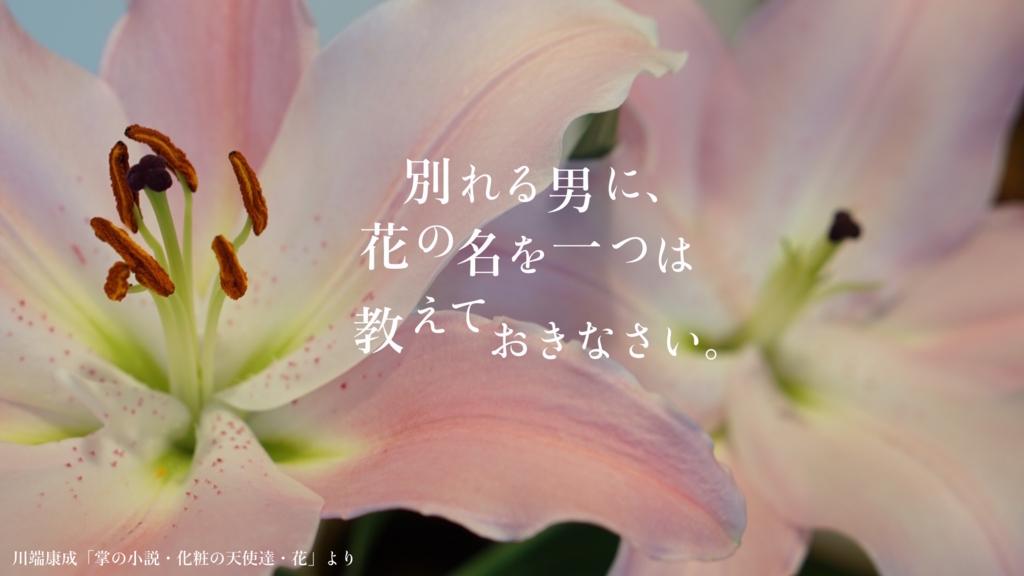 f:id:ume_tubu:20180416115810j:plain