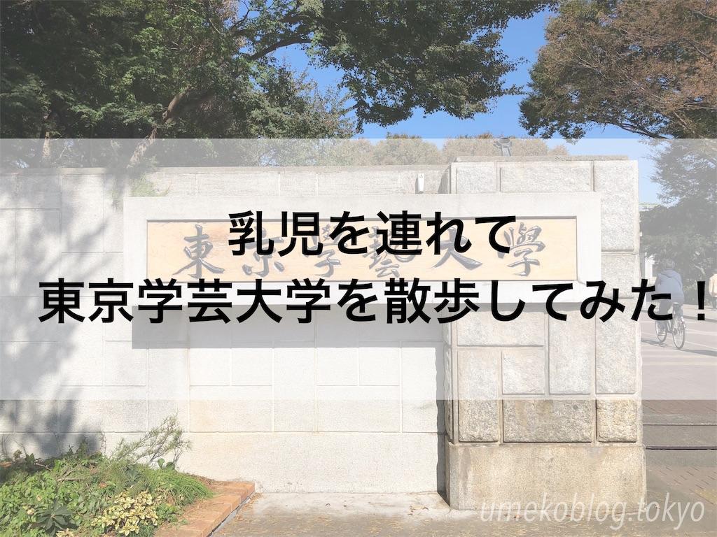 f:id:umekoblog:20181026093852j:image