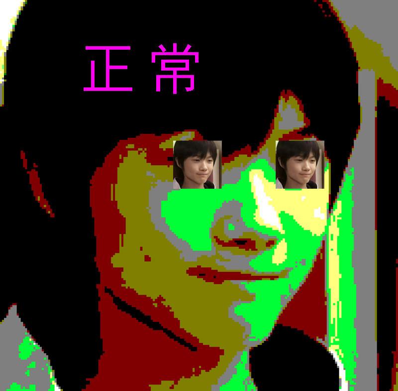 f:id:umelabo:20081127020823j:image