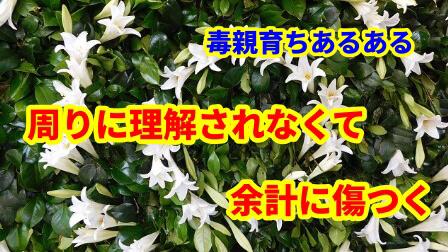 f:id:umeno_iyori:20200727082630p:plain