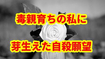 f:id:umeno_iyori:20200815110831p:plain