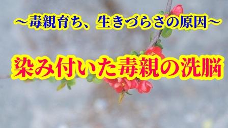 f:id:umeno_iyori:20210304163747p:plain