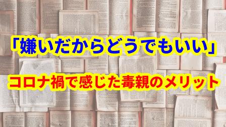f:id:umeno_iyori:20210702170059p:plain
