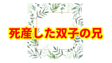 f:id:umeno_iyori:20210713184235p:plain