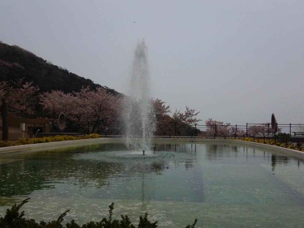 f:id:umenomi-gakuen:20180406003454j:plain