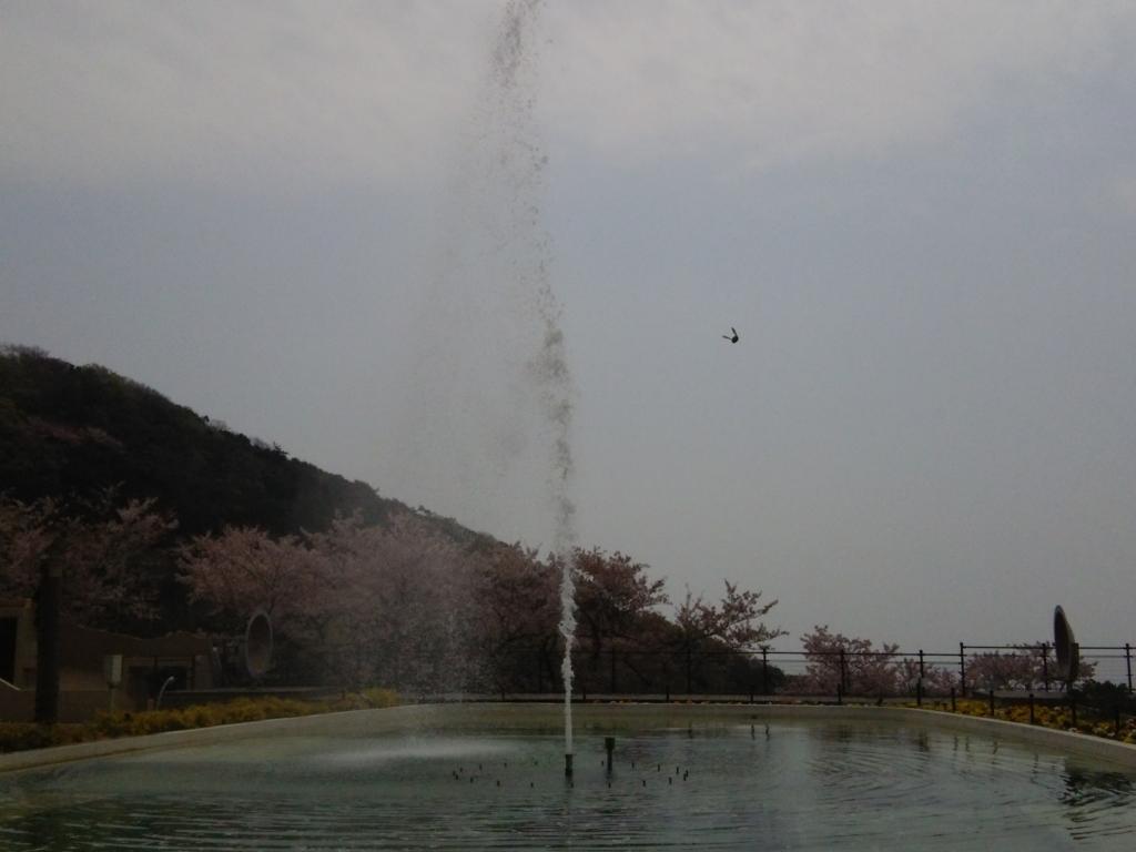 f:id:umenomi-gakuen:20180406003553j:plain