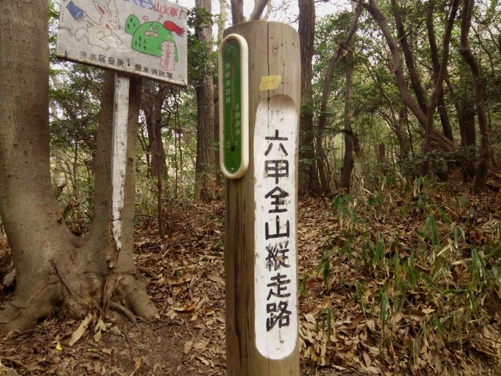 f:id:umenomi-gakuen:20180406005728j:plain