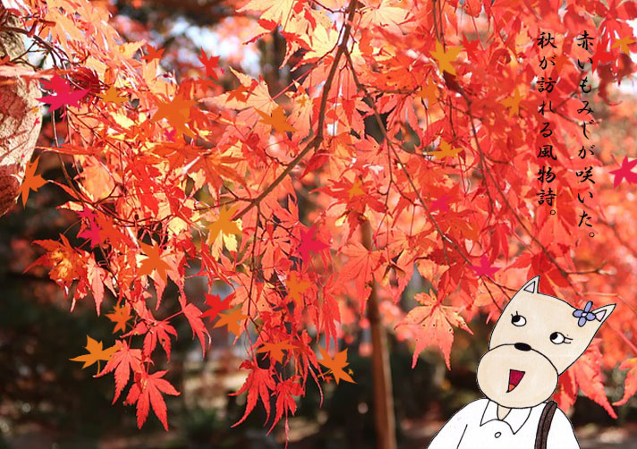 f:id:umenomi-gakuen:20190730102543j:plain