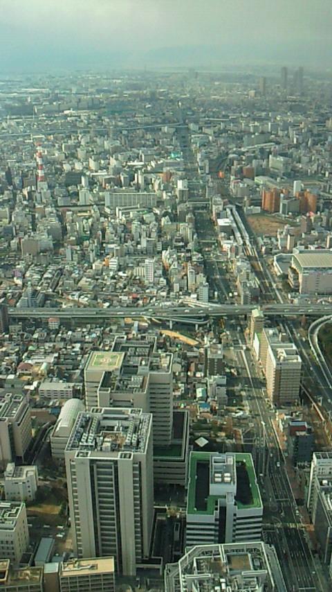 f:id:umenomi-gakuen:20200129025945j:plain