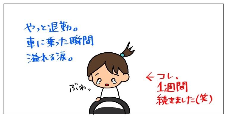 f:id:umesensei:20190407224059j:plain