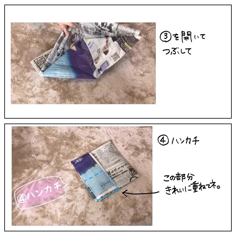 f:id:umesensei:20190908181759j:plain