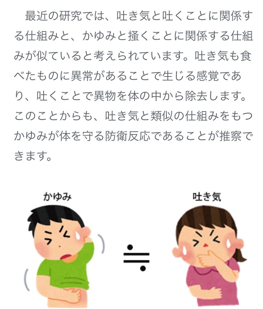 f:id:umi-shibuki:20200714231219j:image