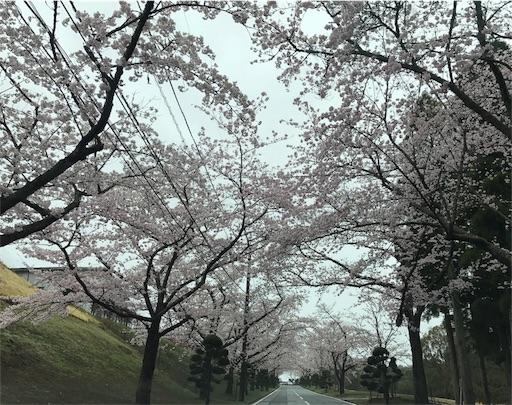 f:id:umichika:20170408184004j:image