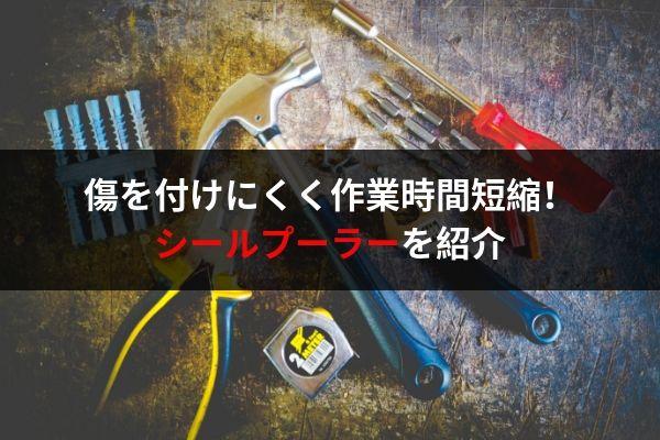 f:id:umigameblog1:20190620013108j:plain