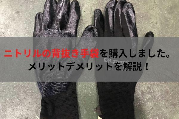 f:id:umigameblog1:20190812174327j:plain