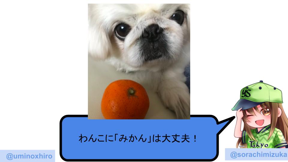 f:id:umihiroya:20191225005800p:plain