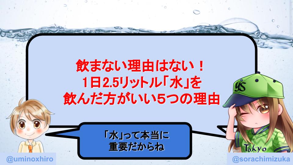 f:id:umihiroya:20200110000420p:plain