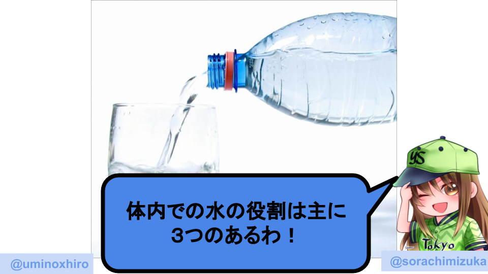 f:id:umihiroya:20200110001345p:plain