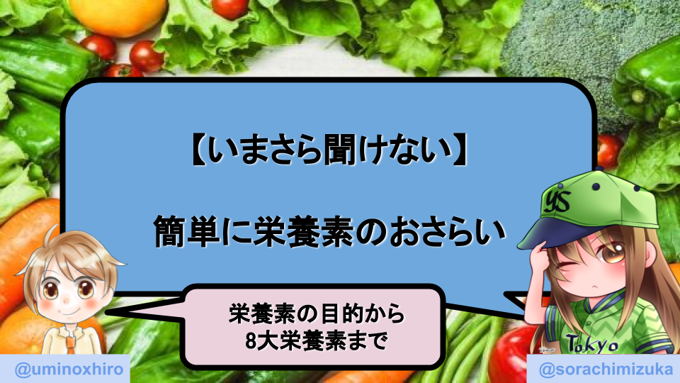f:id:umihiroya:20200209220528p:plain
