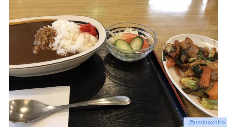 サウナセンター サ飯 カレー