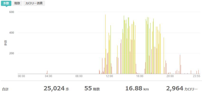 fitbitログより 運動データ2020年5月24日分