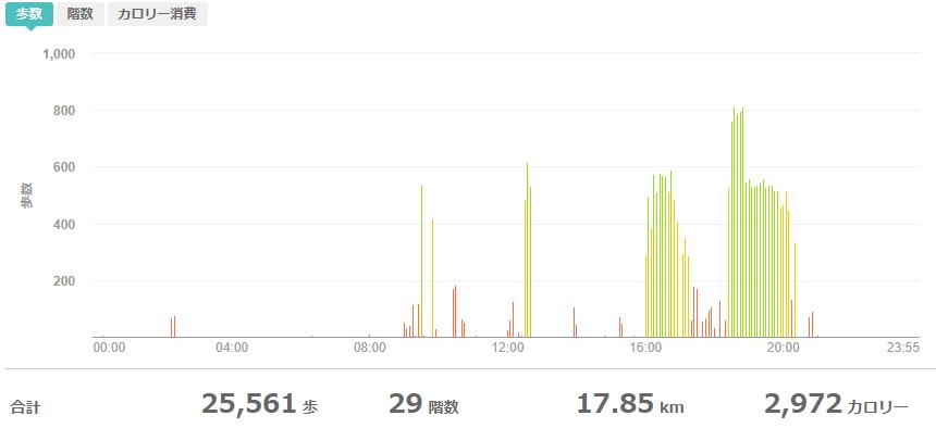fitbitログより 運動データ2020年5月28日分