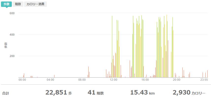 fitbitログより 運動データ2020年5月31日分