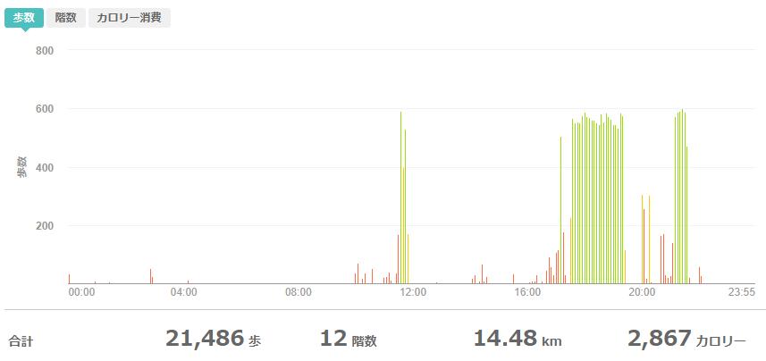 fitbitログより 運動データ2020年6月6日分