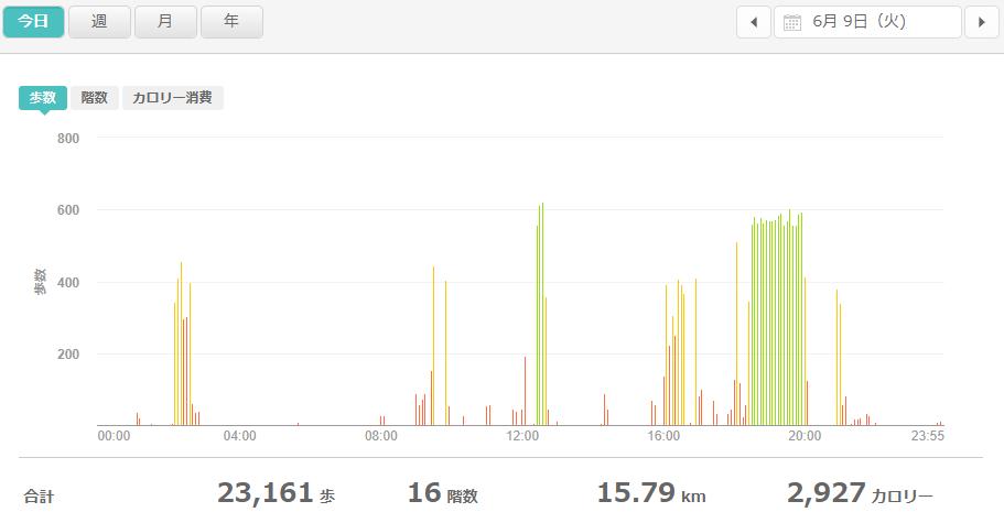 fitbitログより 運動データ2020年6月9日分